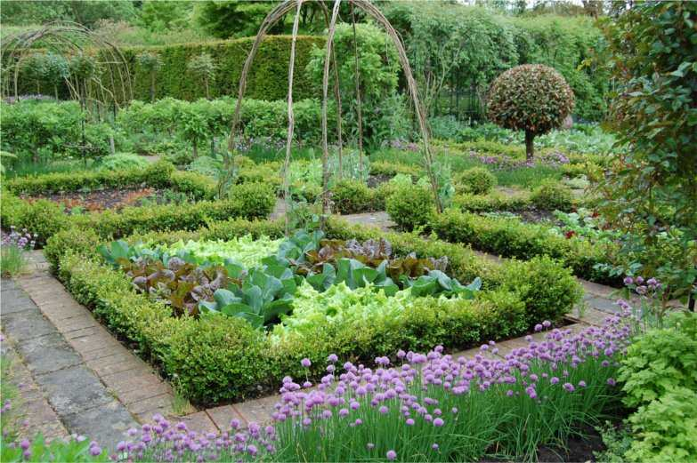 Beautiful gardens fennel and fern for Beautiful kitchen garden designs