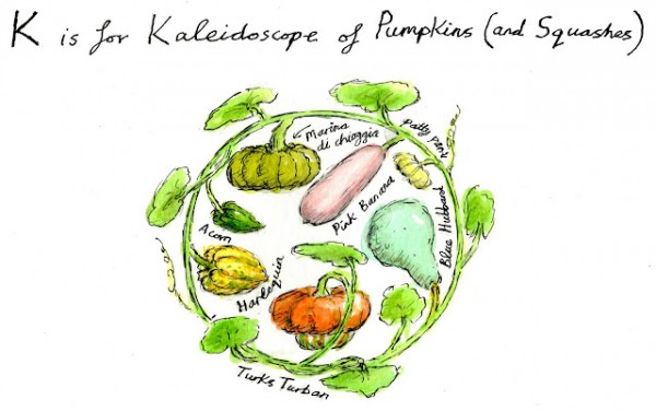 kaleidescope of pumpkins. Illustration by Greg Becker