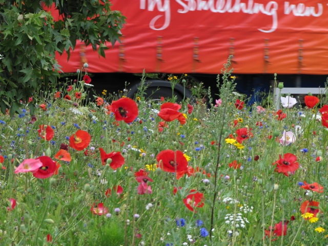 Hogarth Roundabout Meadows at the Chelsea Fringe