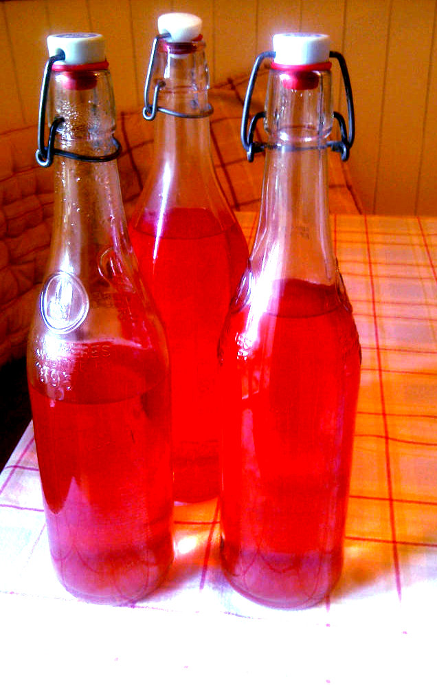 red elderflower cordial