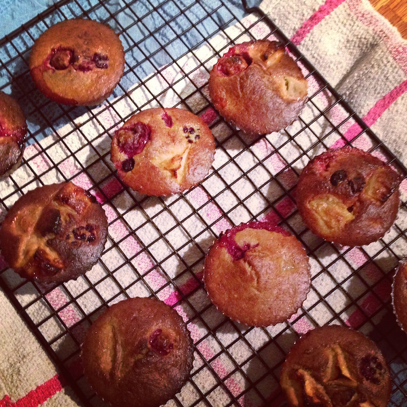 healthy berry muffin
