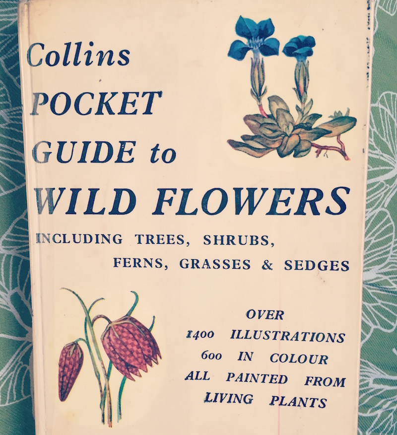 collins pocket guide