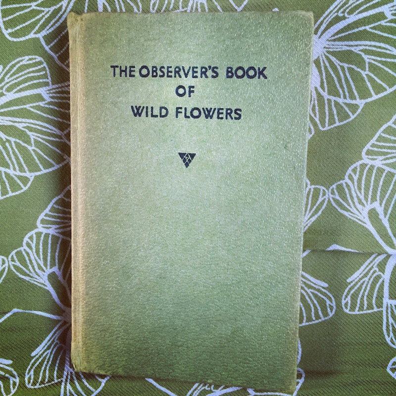 observers book of wildflowers